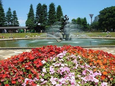 世田谷公園DSC05936.jpg