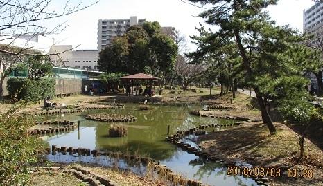 仙台堀川公園IMG_7809.JPG