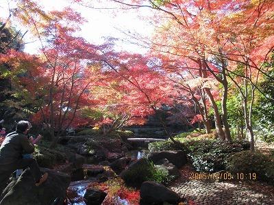大田黒公園IMG_1686.jpg