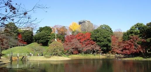小石川後楽園IMG_7209.JPG
