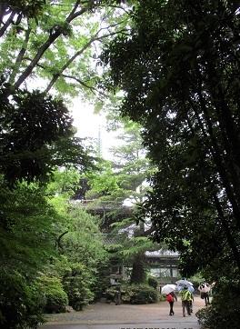 東禅寺IMG_5752.JPG