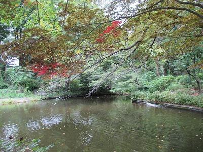 清水谷公園IMG_0176.jpg