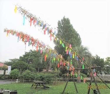 猿江公園IMG_3074.JPG