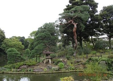 細川庭園IMG_6979.JPG