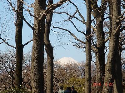 羽根木公園DSC05085.jpg