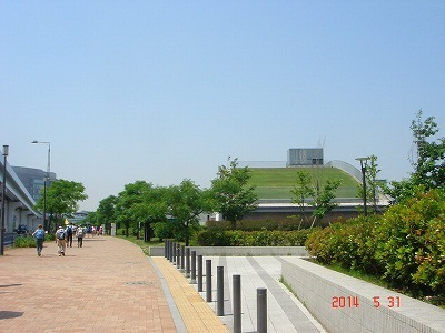 豊洲DSC09930.jpg